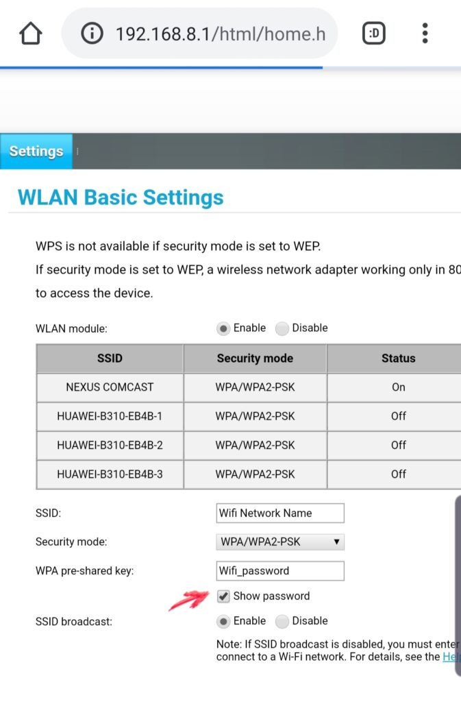 View wifi network password router